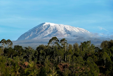 Kilimanjaro Marathon & Tanzania Wildlife Safari with Nature Travel Active